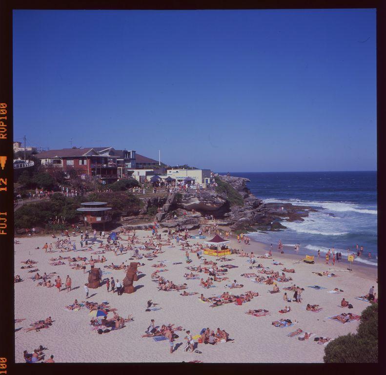 От пляжа Бондай до пляжа Куджи (Bondi to Coogee coastal walk)