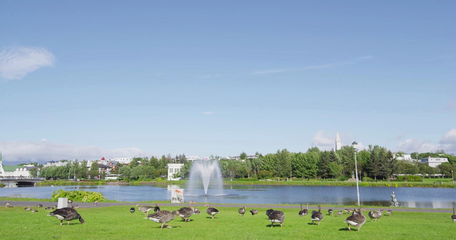Парк кратерного периода