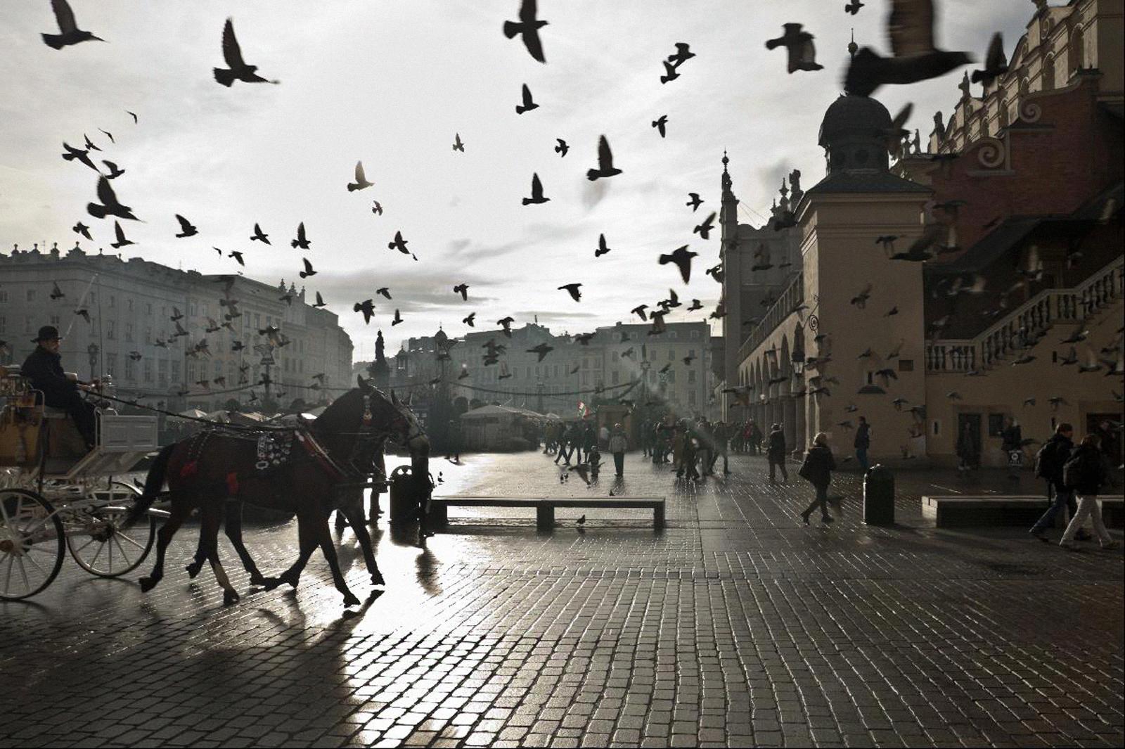 Машина времени в Кракове