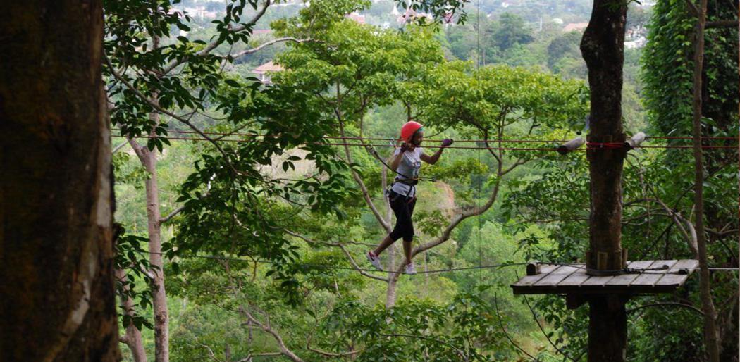Канатный парк Junglextreme