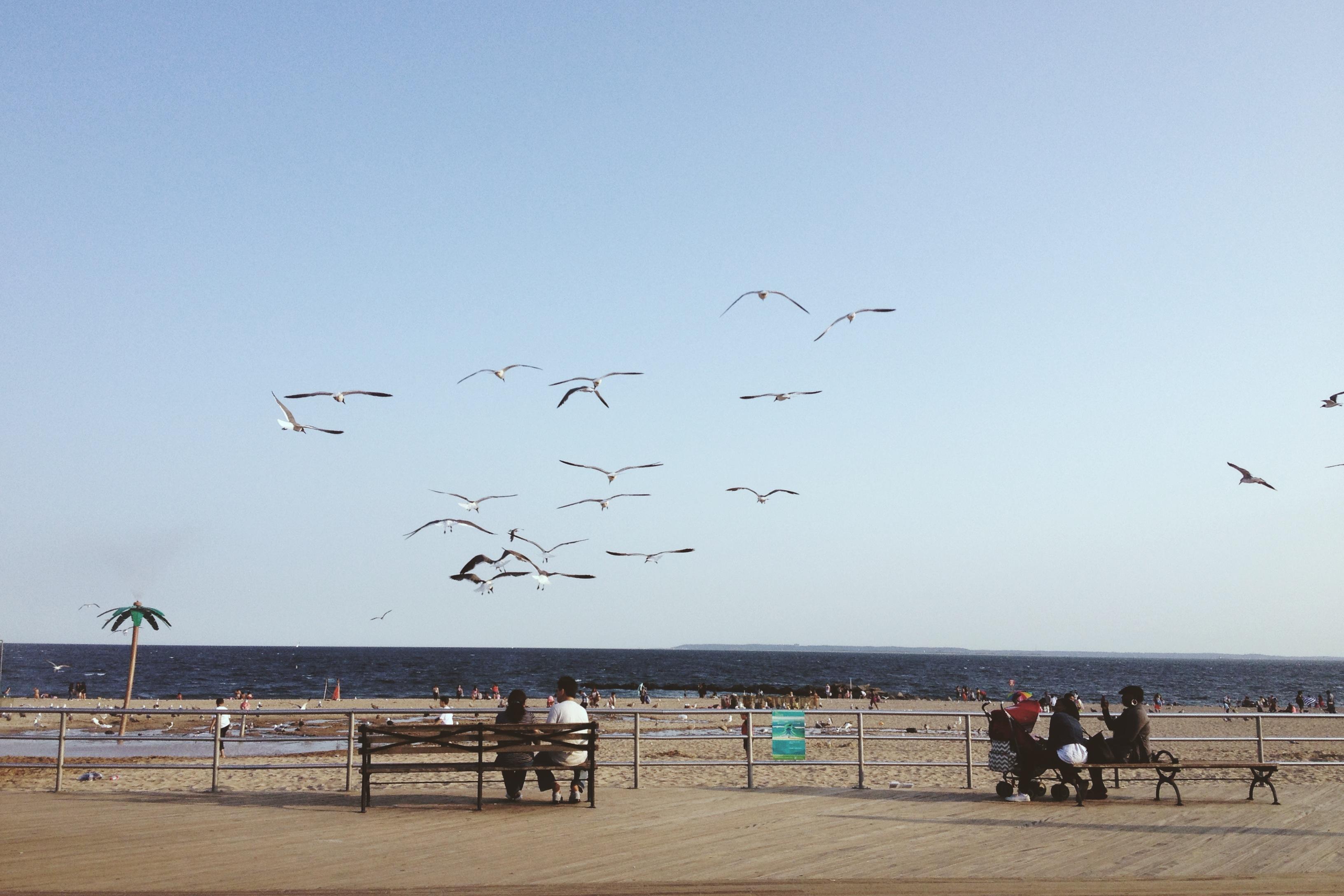 День на пляжах Нью-Йорка: Coney Island и Brighton Beach