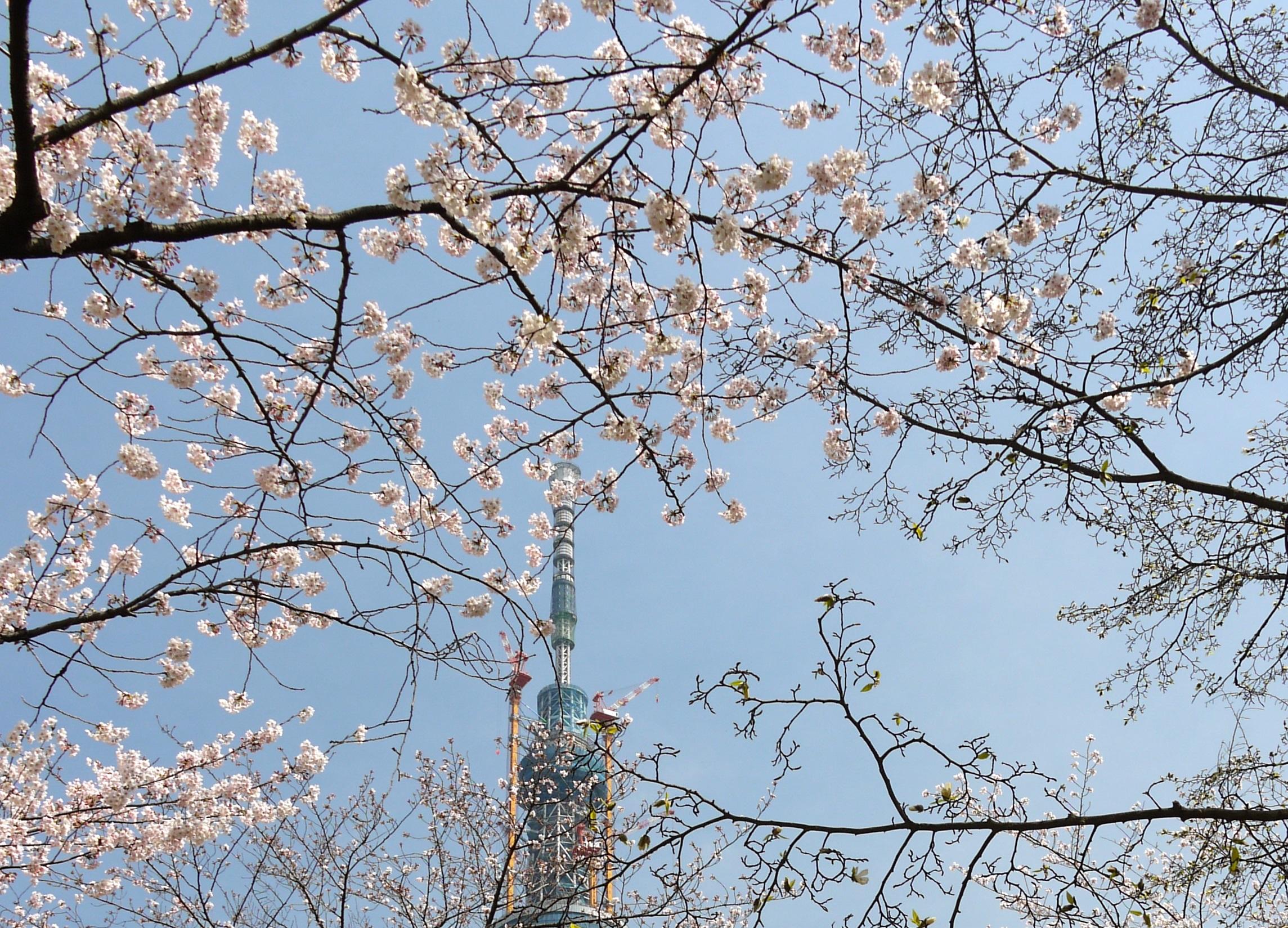 Парк Kuritsu Sumida