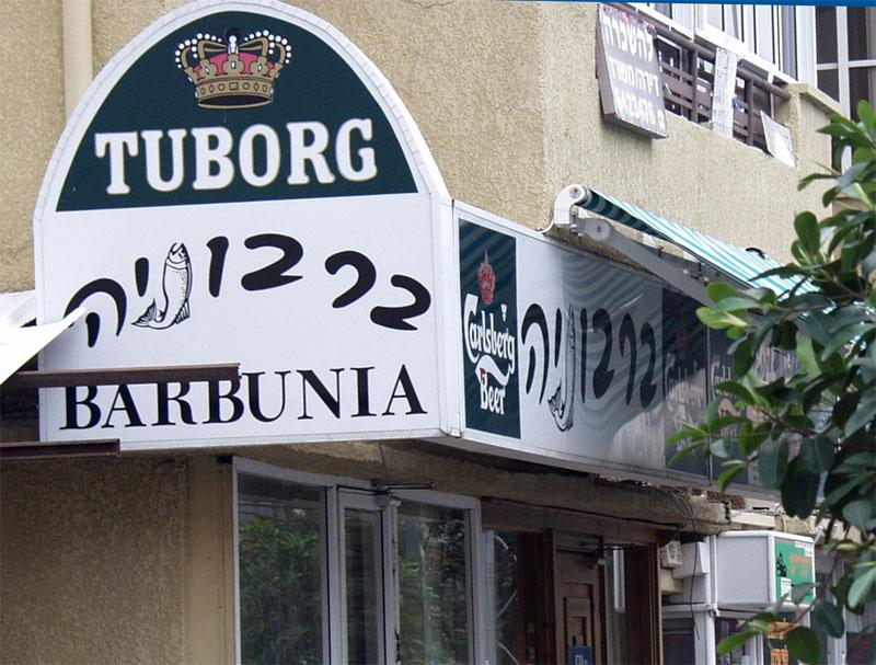 Barbunia