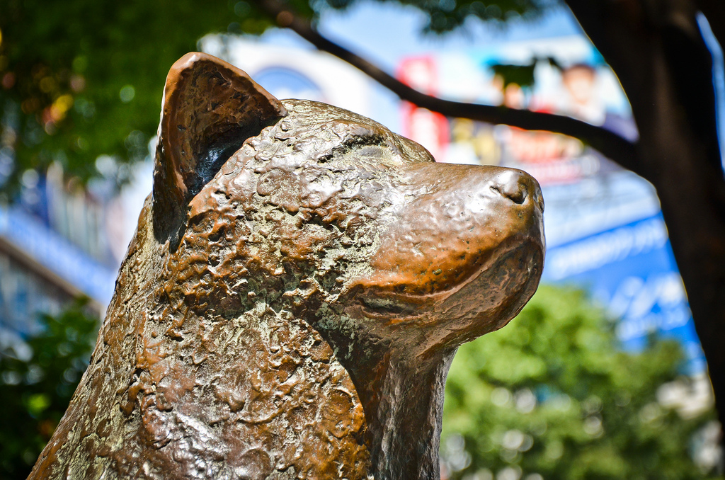 Статуя Хатико