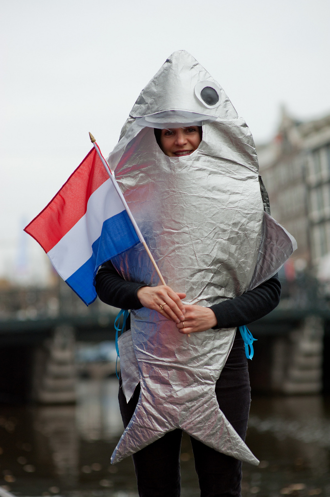 Программа минимум: Амстердам