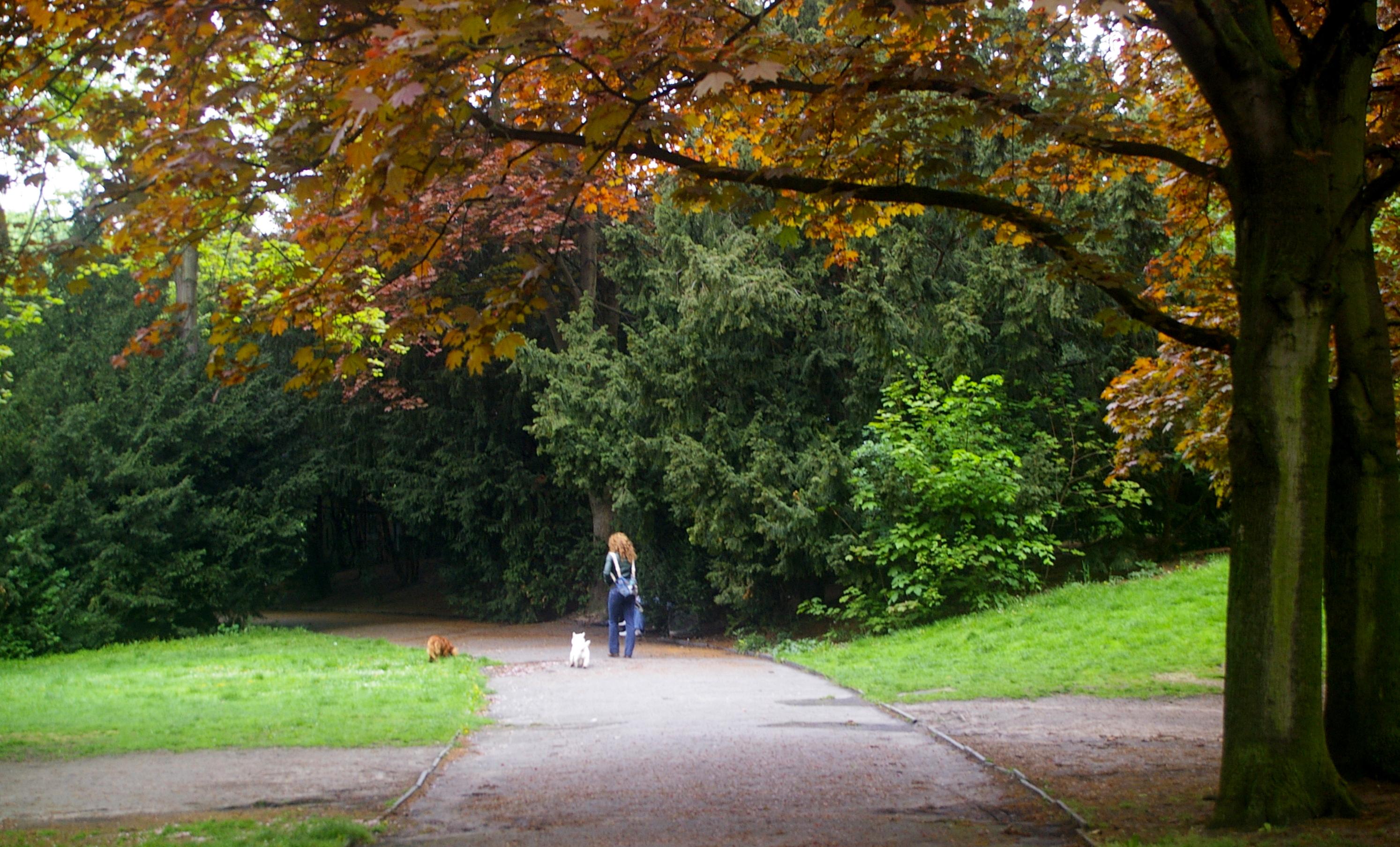 Humboldthain Park