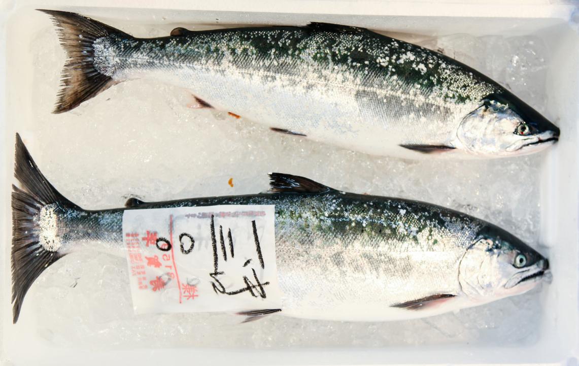 Территория суши: рестораны Токио