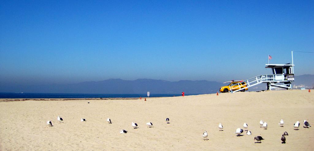 Побегать по пляжу