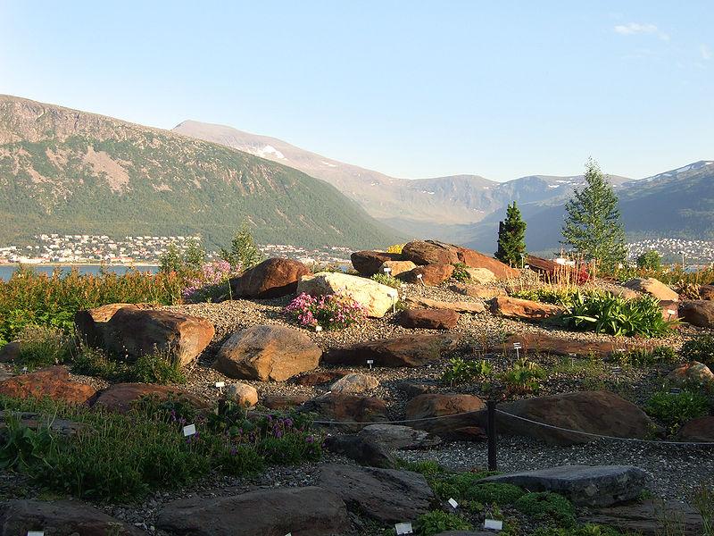 Arktisk-alpin botanisk hage