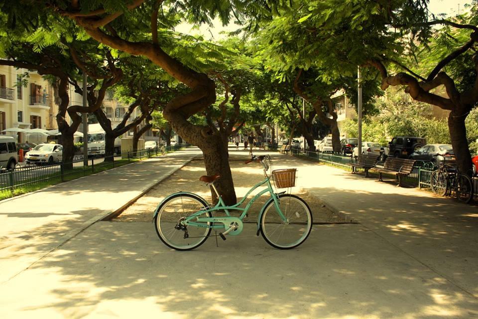 На велосипеде по зеленому Тель-Авиву: бульвары, скверы и парки
