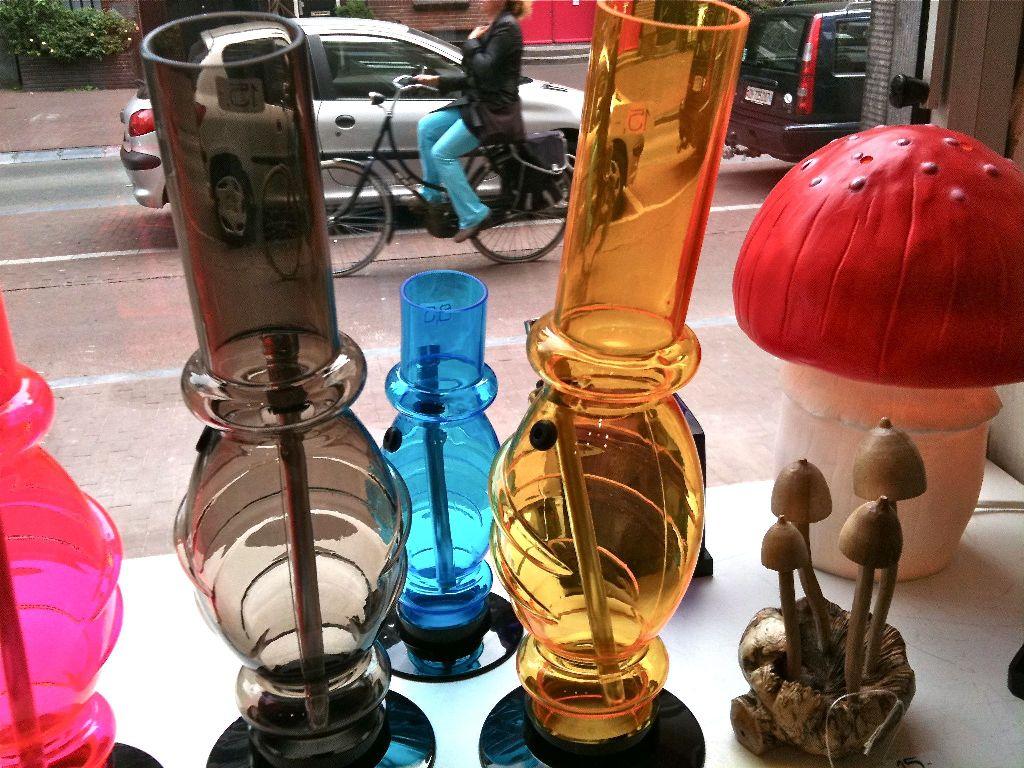 Magic Mushroom Gallery