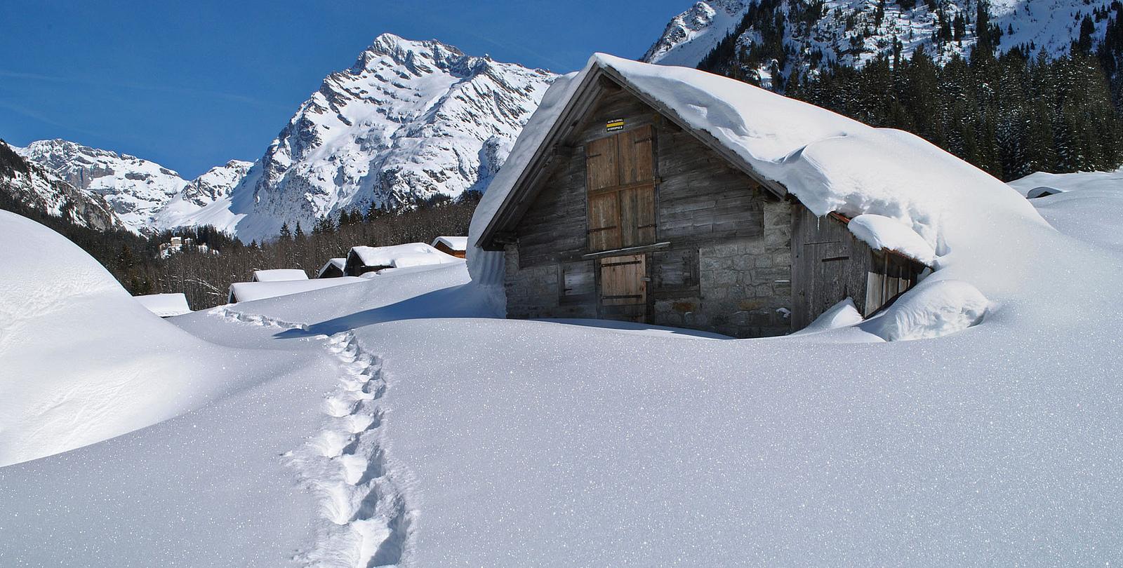 Наедине с красотой природы: лыжные трассы, где нет туристов
