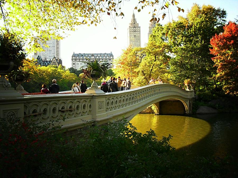 Садовое товарищество: парки Нью-Йорка