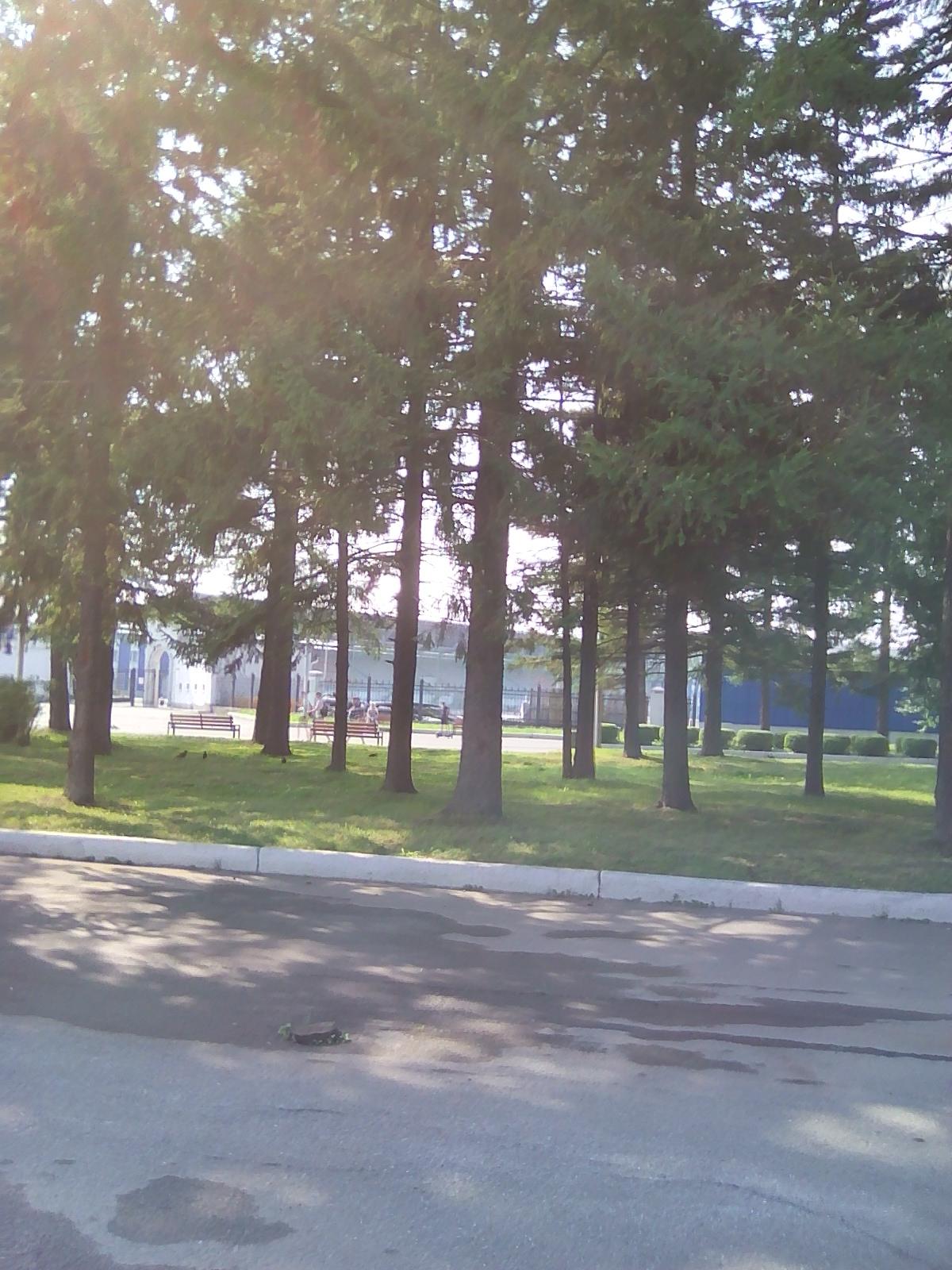 Парк ДК им.Окунева