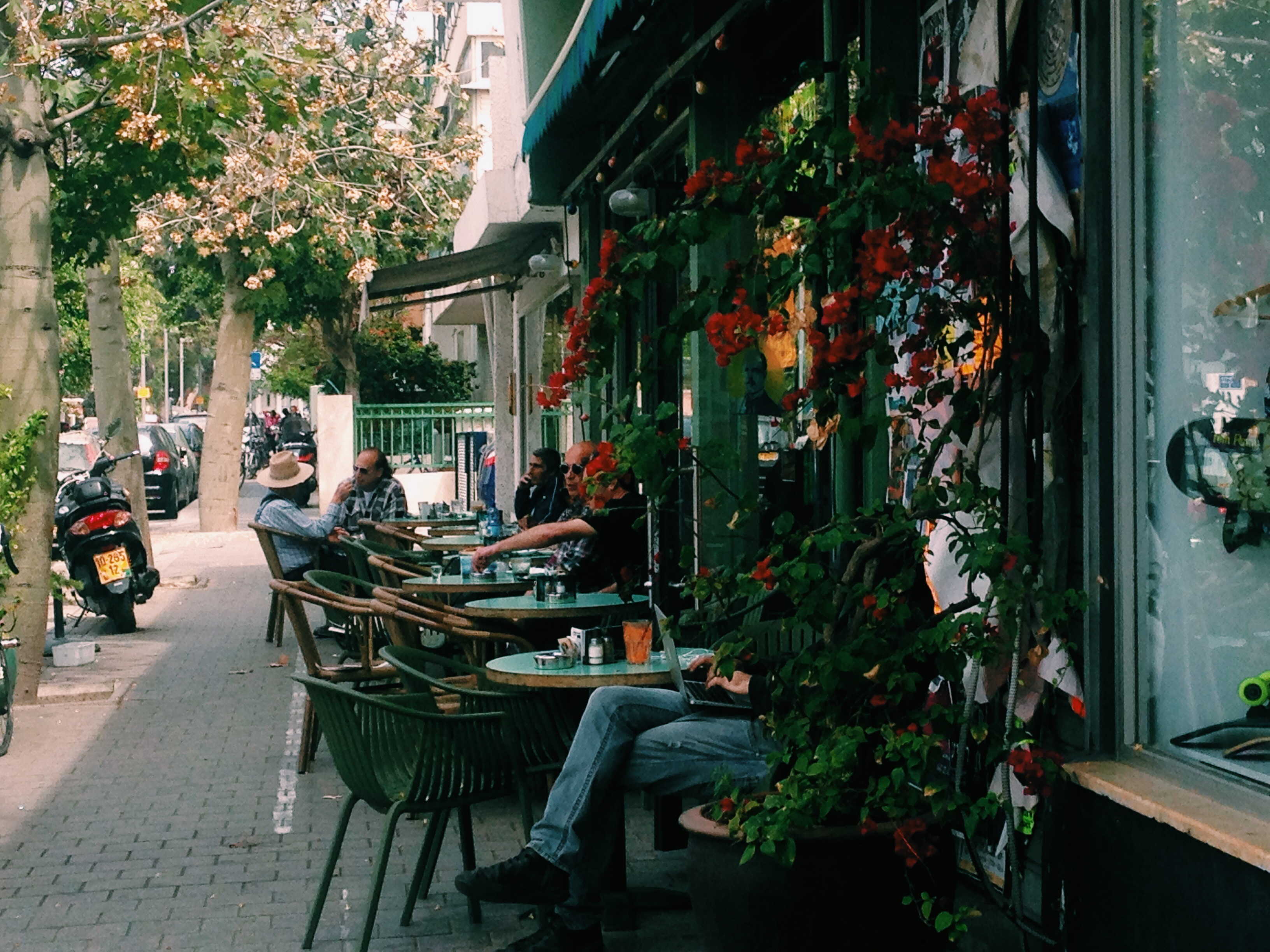 Кафе Bialik