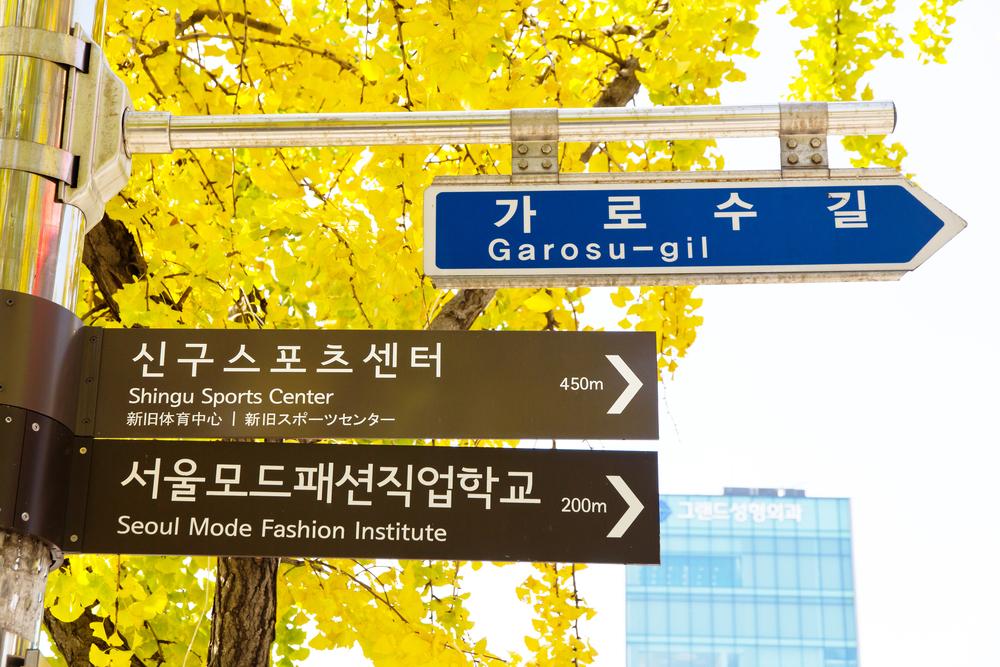 """Sinsa Shopping Street """"Garosu-gil"""""""